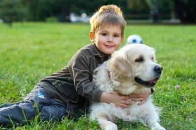 Хотите, чтобы ребенок помогал ухаживать за собакой? Требуйте по возрасту